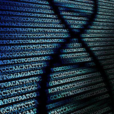 Nextera XT DNA Library Preparation on PIPETMAX®