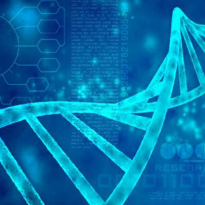 PIPETMAX® Automation of the Illumina Nextera XT DNA Library Preparation Kit